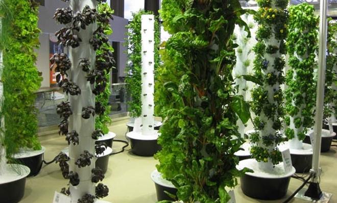 jardines verticales -con-verduras-ecologicas