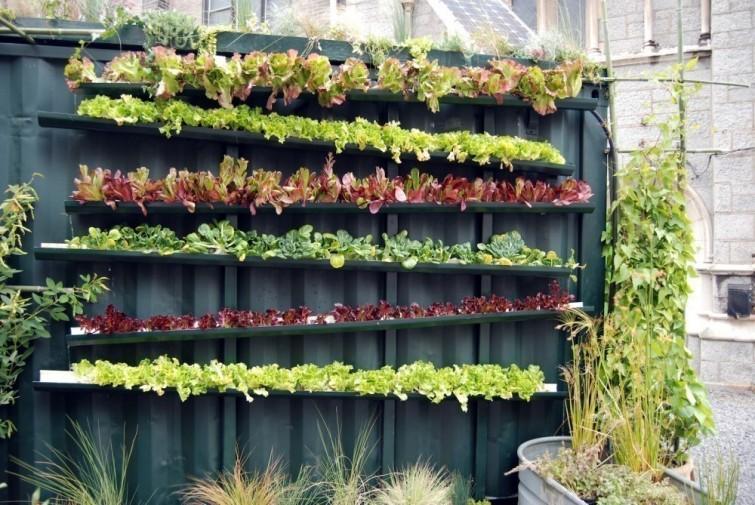 jardines verticales - Líneas horizontales