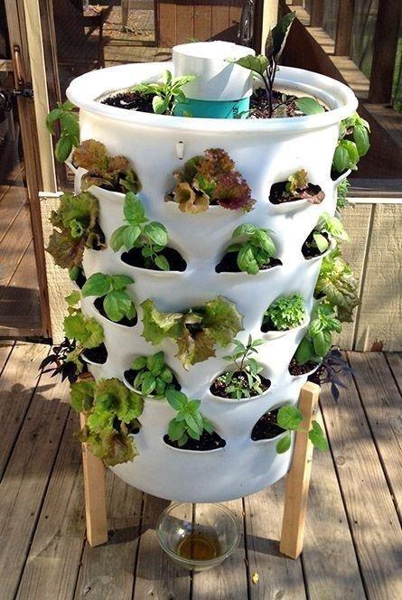 jardines verticales cilindrico maceta