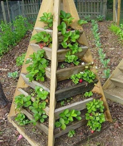 jardines verticales - piramide jardin