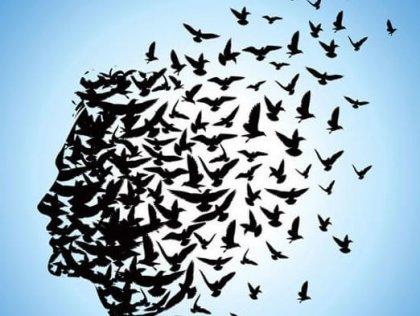 Liberar la mente