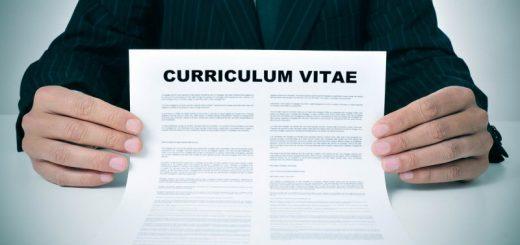 currículum perfecto